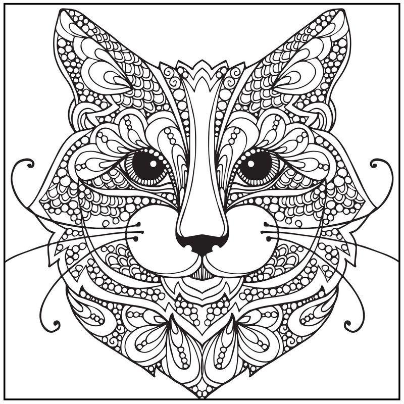 kolorowanki-koty18.jpg (800×800)