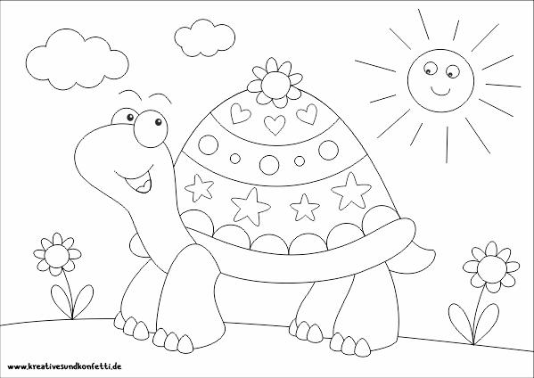 Ausmalbild Fur Kinder Lustige Schildkrote Kreatives Und Konfetti Ausmalbilder Kinder Lustige Schildkrote Ausmalen