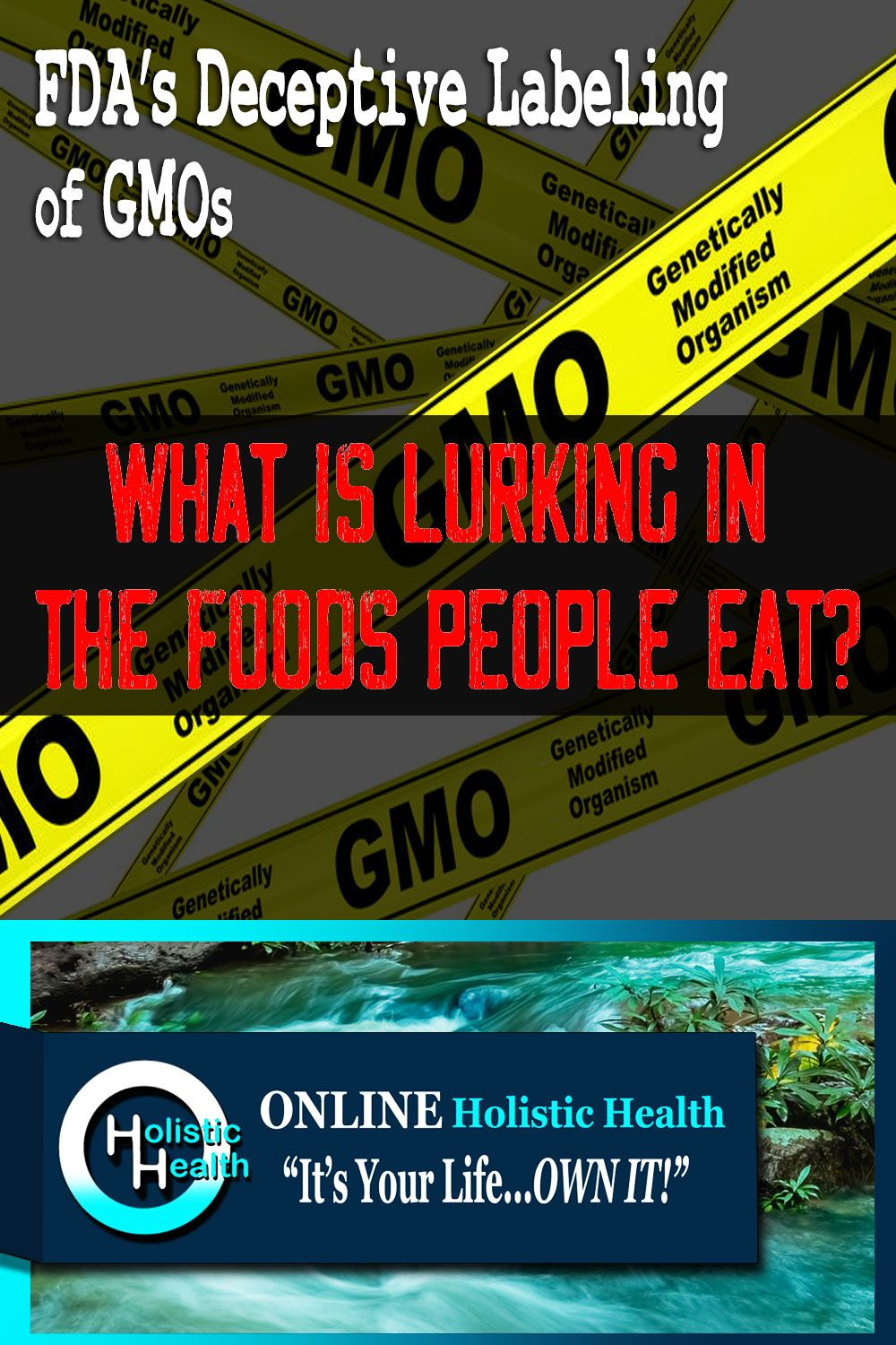 The Case Against The Fda S Deceptive Labeling Of Gmos In 2020 Holistic Health Health Blog Genetically Modified Food