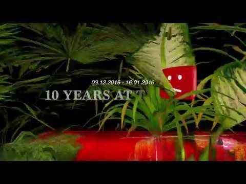 Ten Years at the Zoo - YouTube
