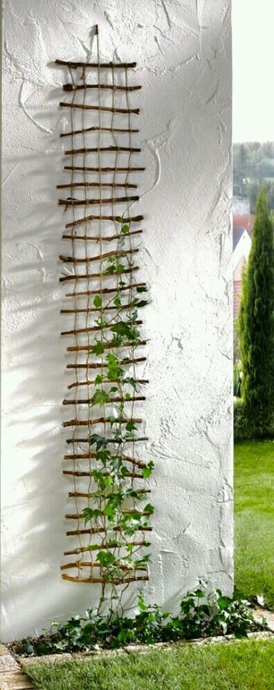 Photo of For lightweight climbing vines – great idea – no source web page or instructions…