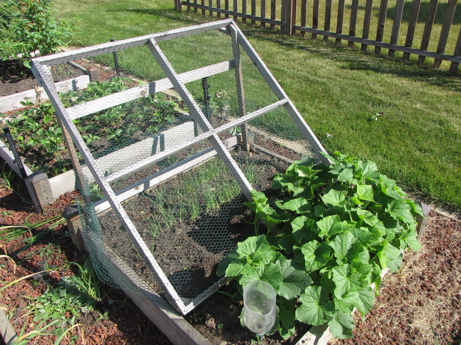 Marvelous Cucumber Trellis Ideas Part - 3: Raised Bed Cucumber Trellis Ideas
