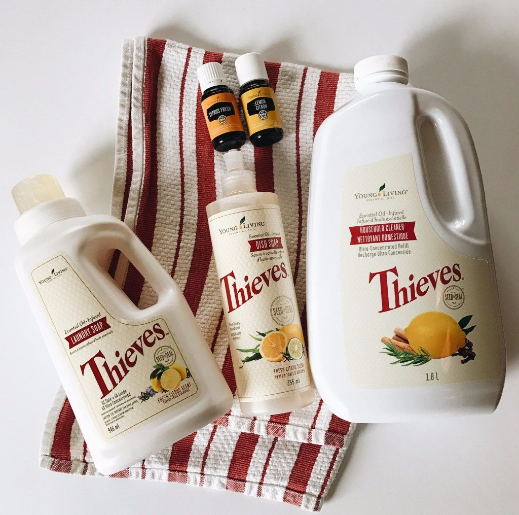 Thieves Cleaner… Does It Really Work? + Download a Free