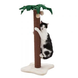 Coco Palm Scratching Post: A Palm Tree Scratch Post With Life Like Felt  Leaves And Dangling Toy Coconuts. Free Delivery On Orders At Zooplus!