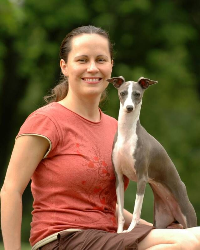 An Italian greyhound to chase butterflies in Mom's garden and relax on her lap in the warm sun