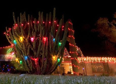 We're spending Christmas in Tucson this year! Can't wait :) - Christmas In Tucson - Lights To Go Out In Winterhaven? Christmas
