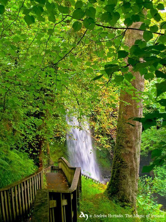 Glencar Waterfall, Co.Leitrim by The Magic of Ireland. © Andrés Hurtado