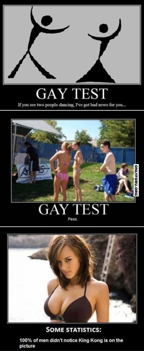 test gay Beer funny