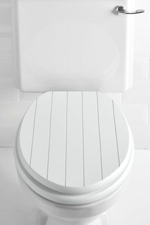 Next Groove Toilet Seat White In 2019 Rennovation Wooden