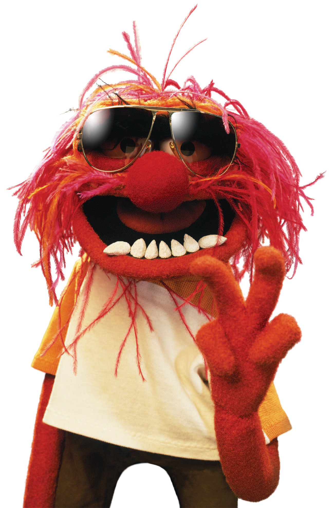 animal muppets - Google Search | Drums | Animal muppet