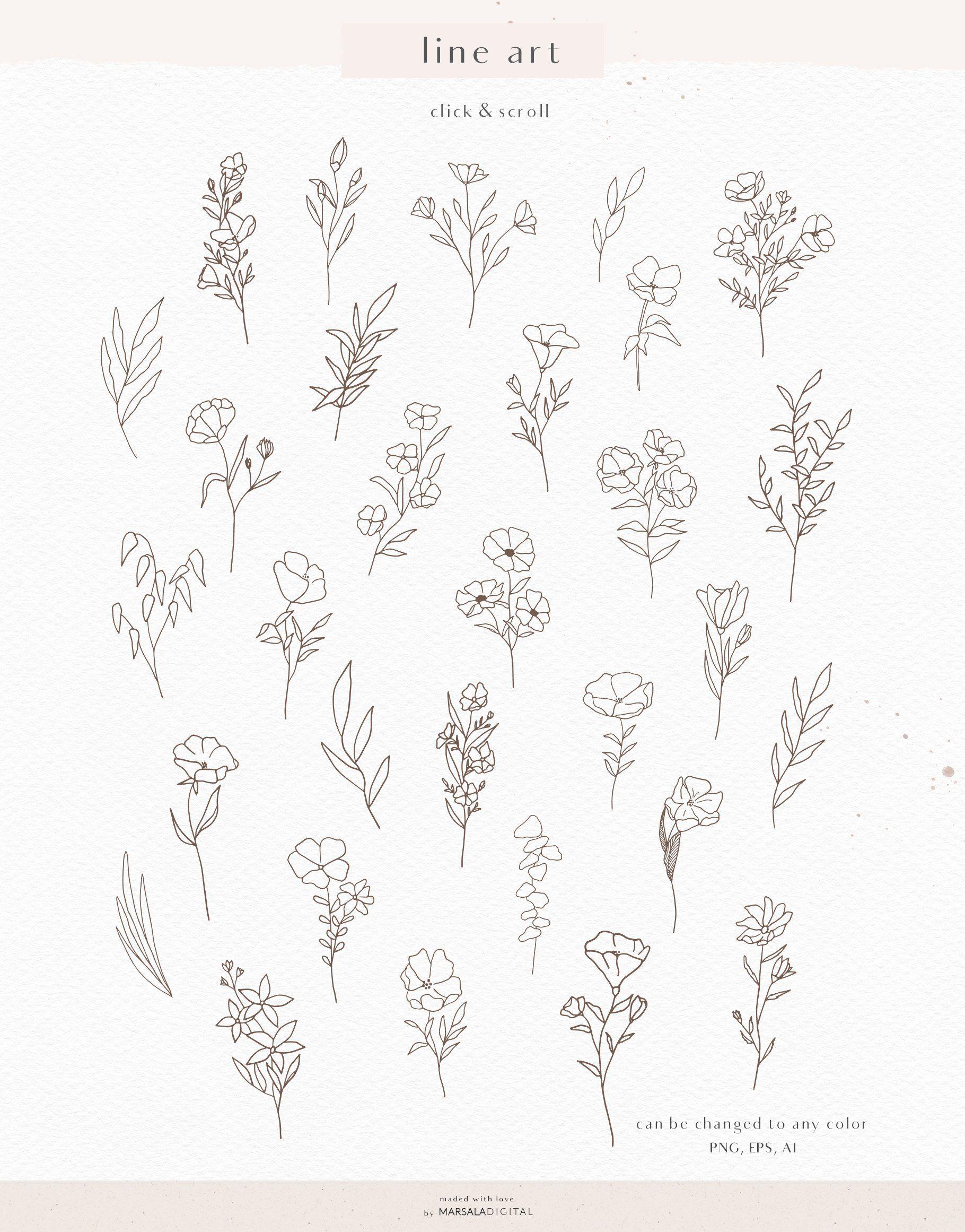 Watercolor & Pencil Sketch Florals