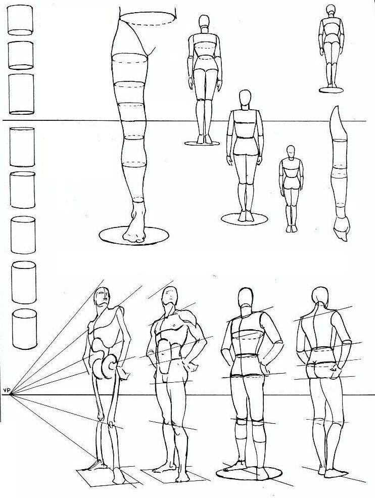 les proportions du corps methodology pinterest anatomie dessin et nus. Black Bedroom Furniture Sets. Home Design Ideas