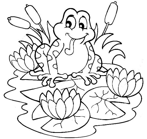 Frog Sitting On Lilypads And Lotus Flower Coloring Pages
