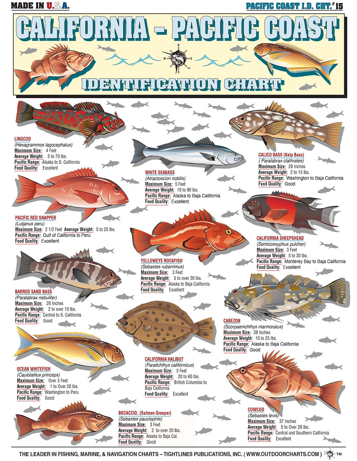 Pin By Zach Anderson On Fishing Identifications Pacific Fish Fish Chart Fish
