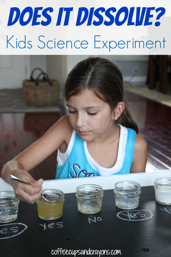Does It Dissolve Kids Science Experiment Science For Kids Science Experiments Kids Science Experiments