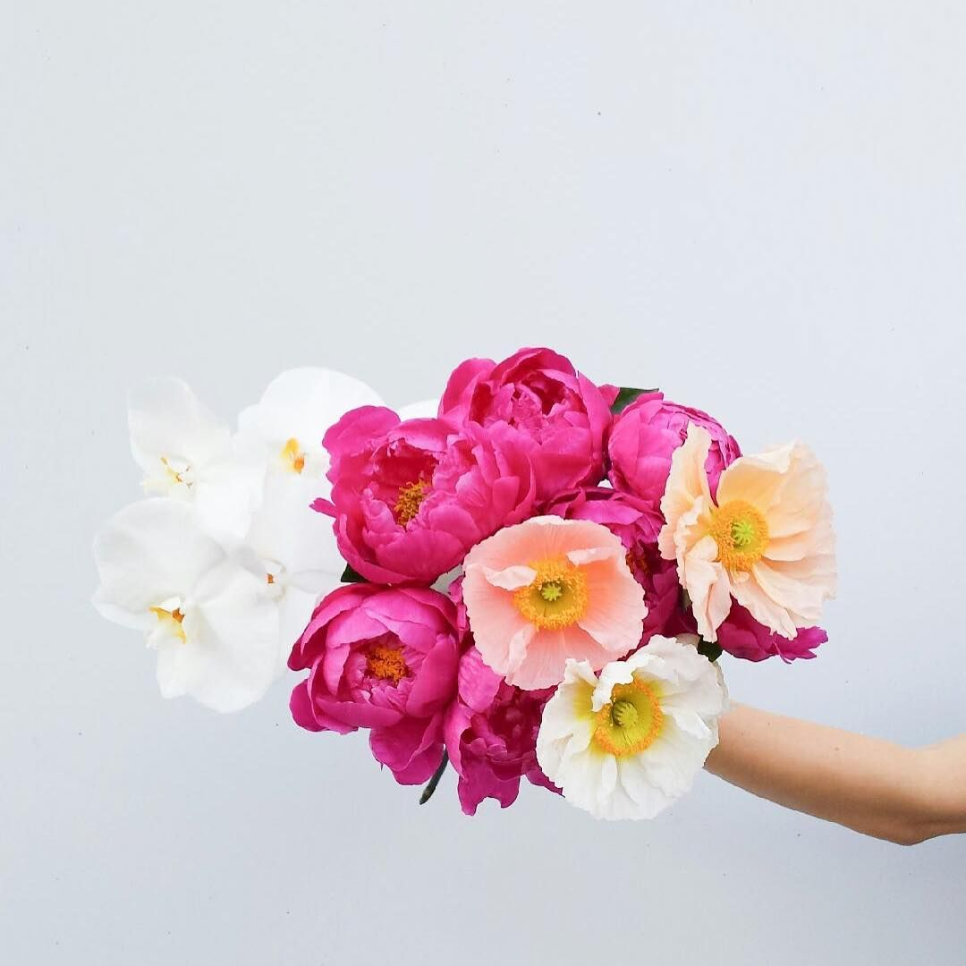 austinbloom.adelaide) Beautiful pink and white bouquet of Peonies ...