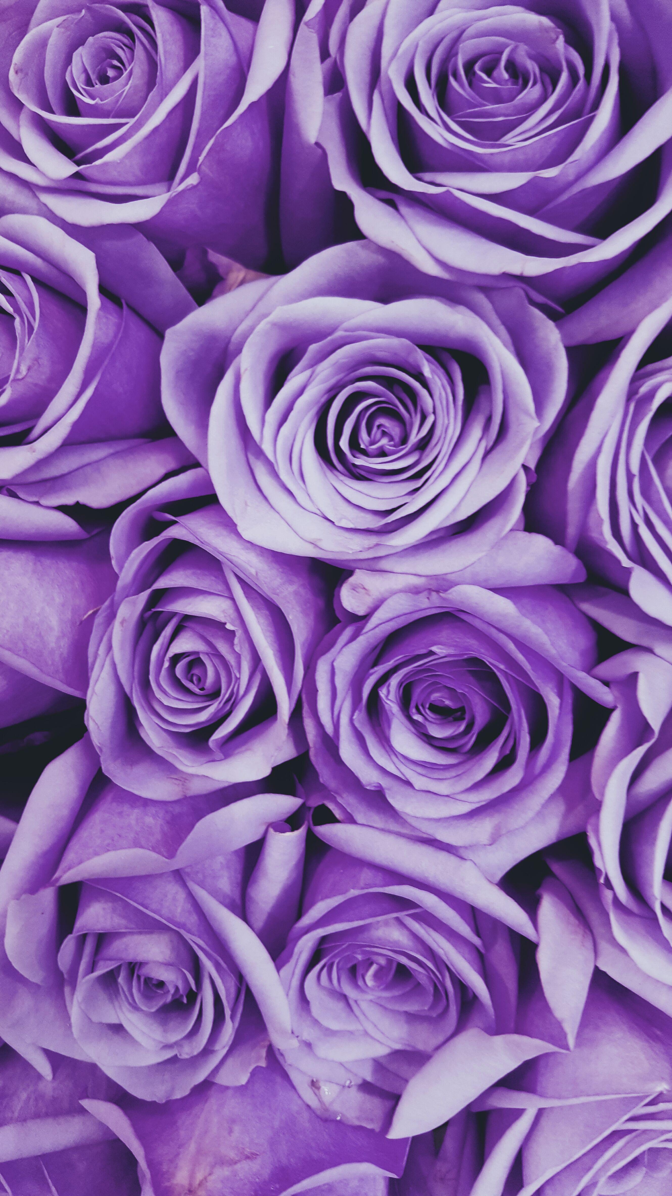 purpleflowers floralart textileart textiledesign