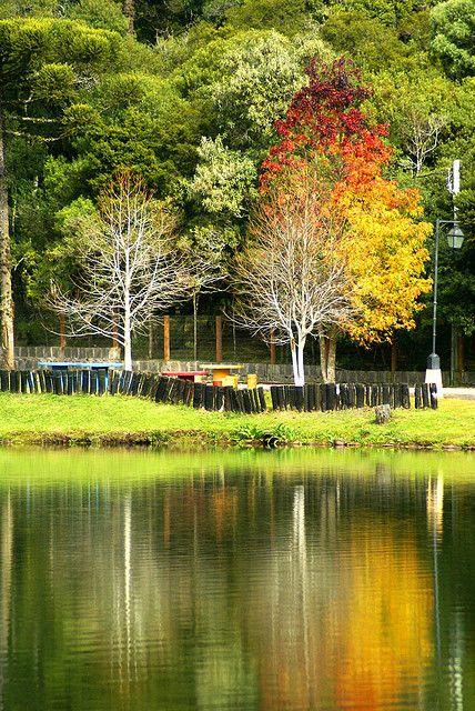São Francisco de Paula Rio Grande do Sul fonte: i.pinimg.com