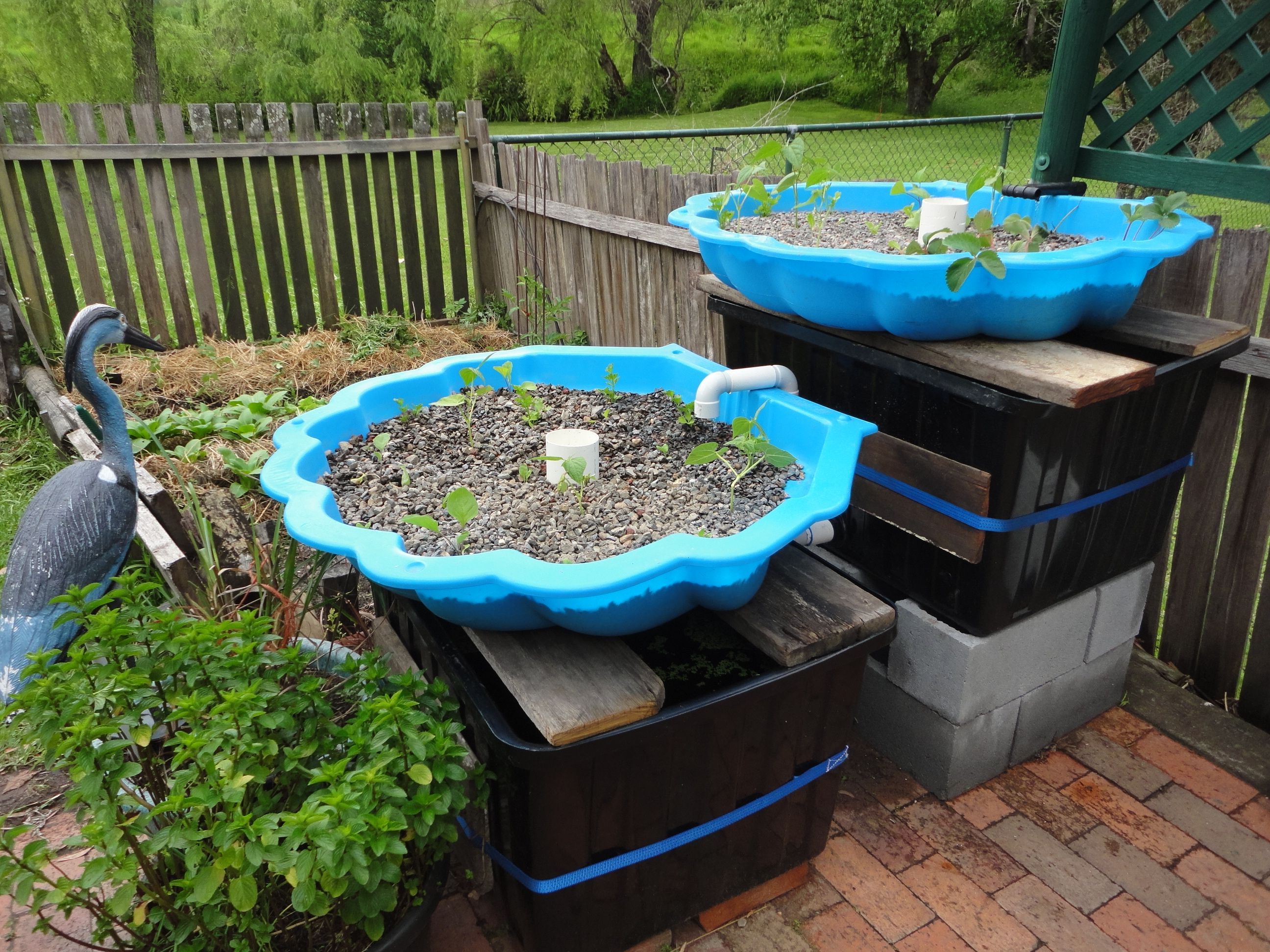 Aquaponics small baby pool aquaponics system for Aquaponics pond design