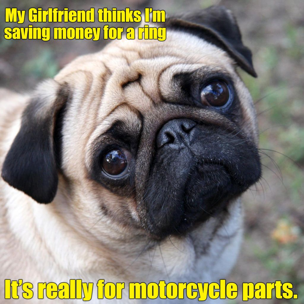 At Least It Shows Commitment To Your Bike Dhymotorsports