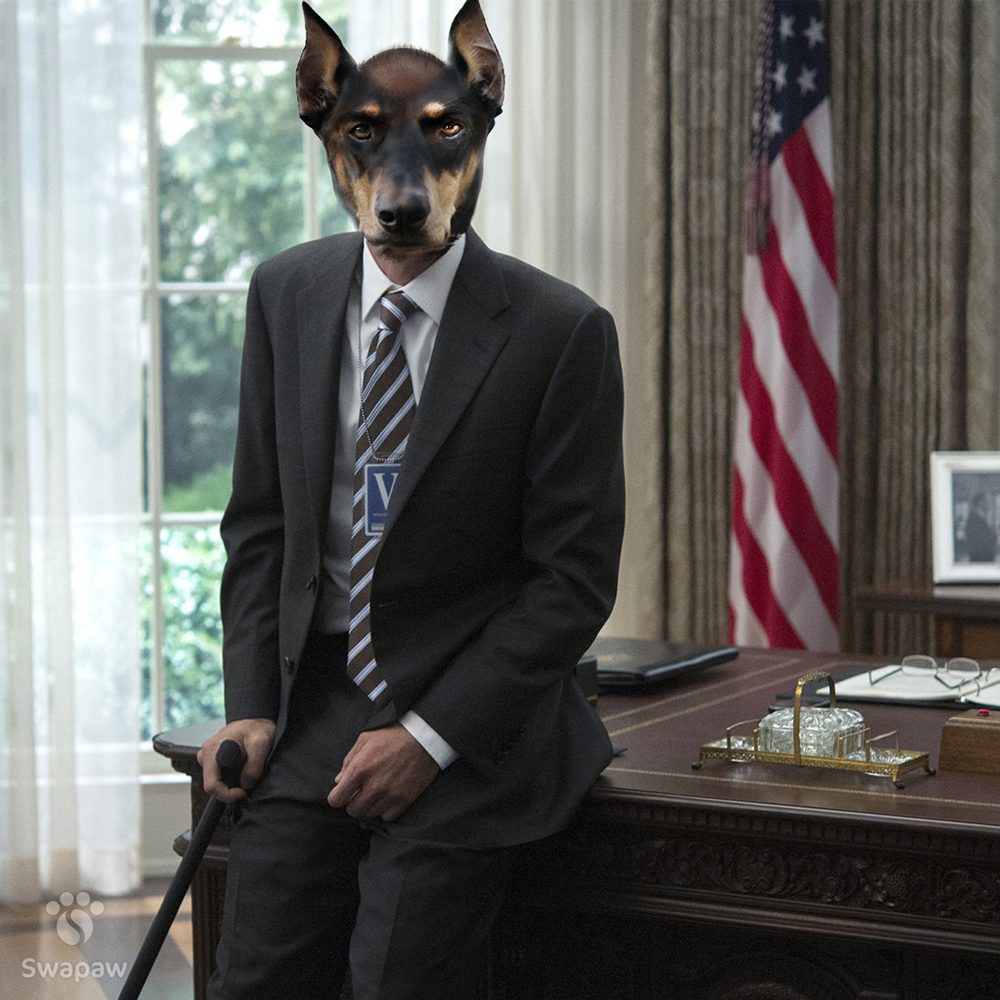 If House Of Cards Cast Were Dogs
