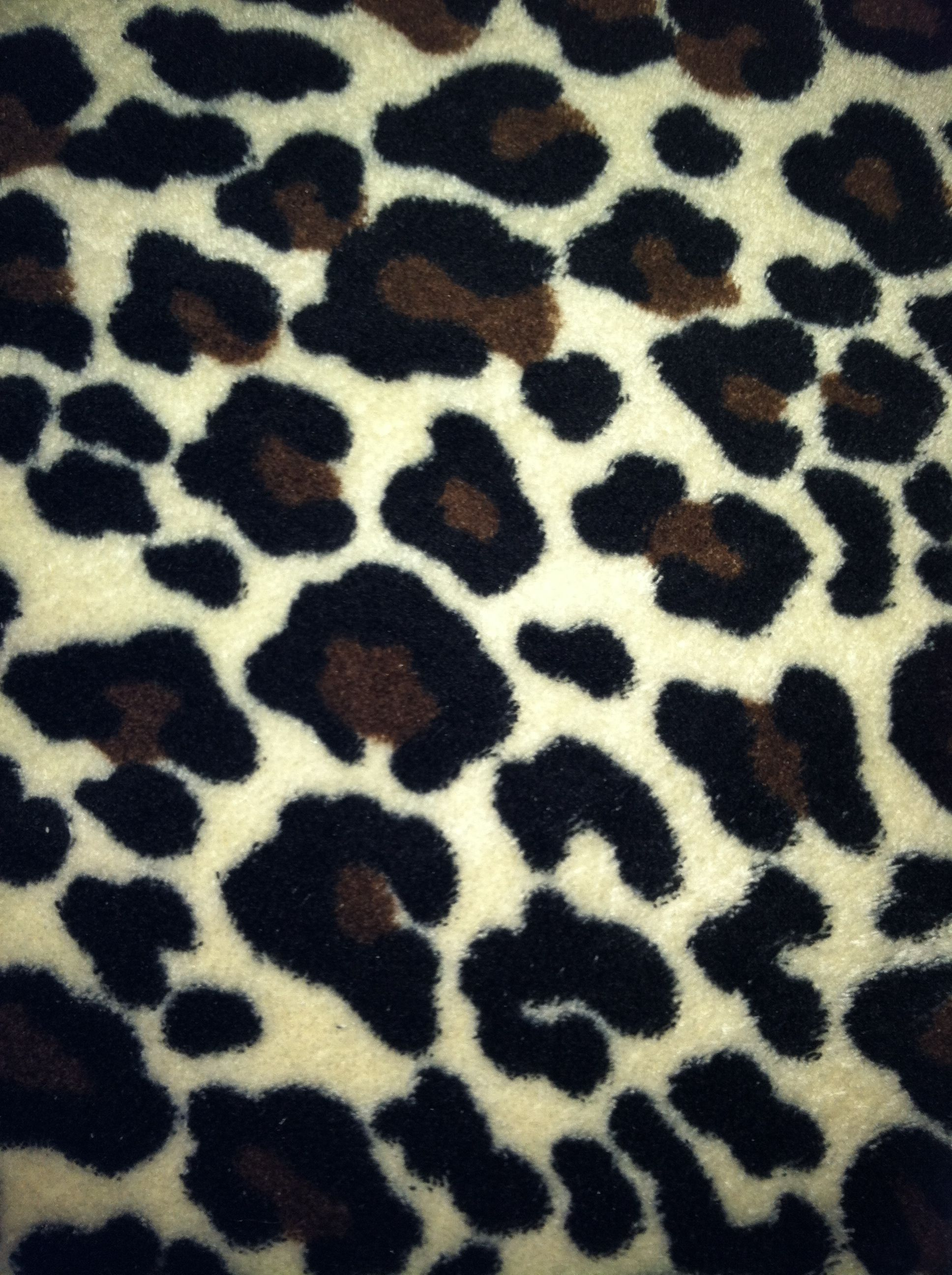 Cheetah Blanket Photography Cheetah Bedding Fabric