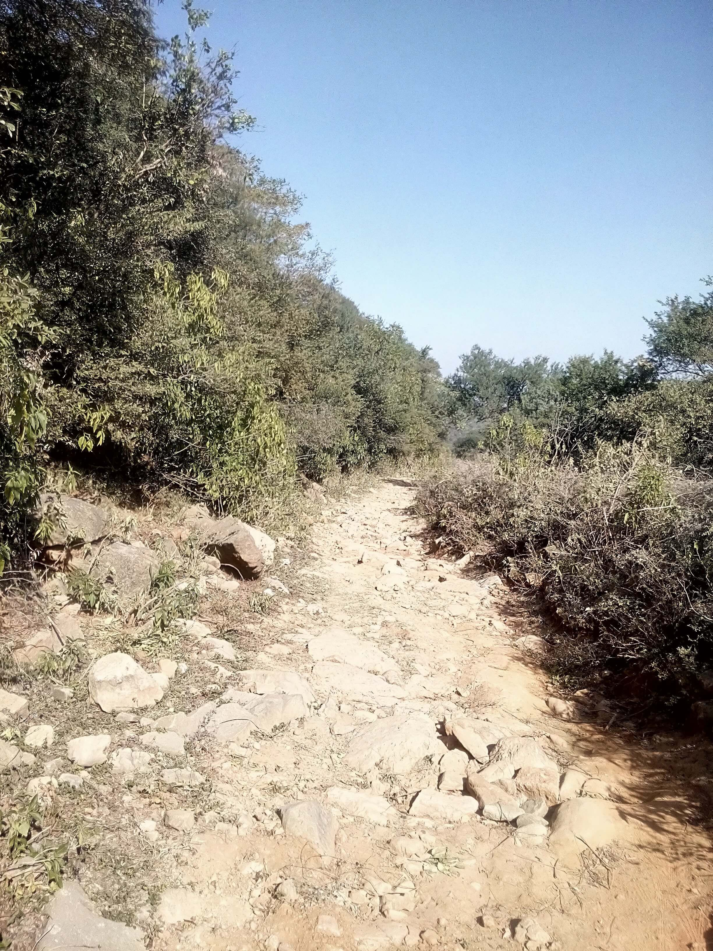 The Rocky Route