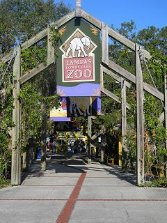 Get The Zootampa App With Interactive Map Zootampa At Lowry Park