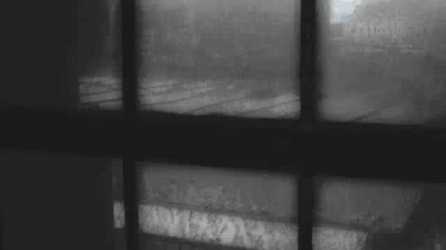 4. Video zur multimedialen ofelia metamorfosis. Text / Lyrik: Marco Mehring Sprecher: Marco Mehring (verfremdet) Video: Marco Mehring Musik: Max Richter - I was just thinking maxrichtermusic.com/en/index.php Länge: 1:00 min Entstanden in Hamburg, 25. Oktober 2011