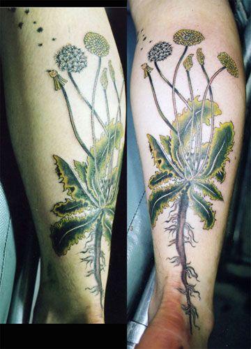 Su Houston : Professional Tattoo Artist | Color Tattoos | Tattoos ...
