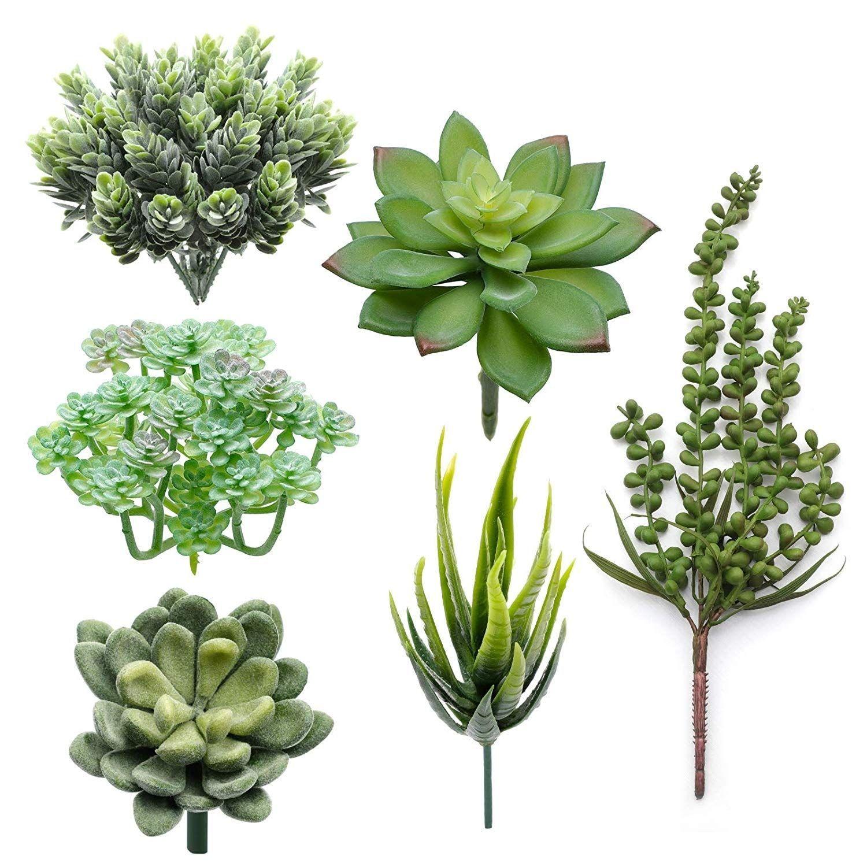 Künstliche Sukkulenten, 6 Stück verschiedener künstlicher Pflanzen, dekorativ#dekorativ #künstliche #künstlicher #pflanzen #stuck #sukkulenten #verschiedener