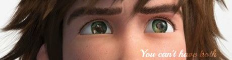 Hiccup's eyes