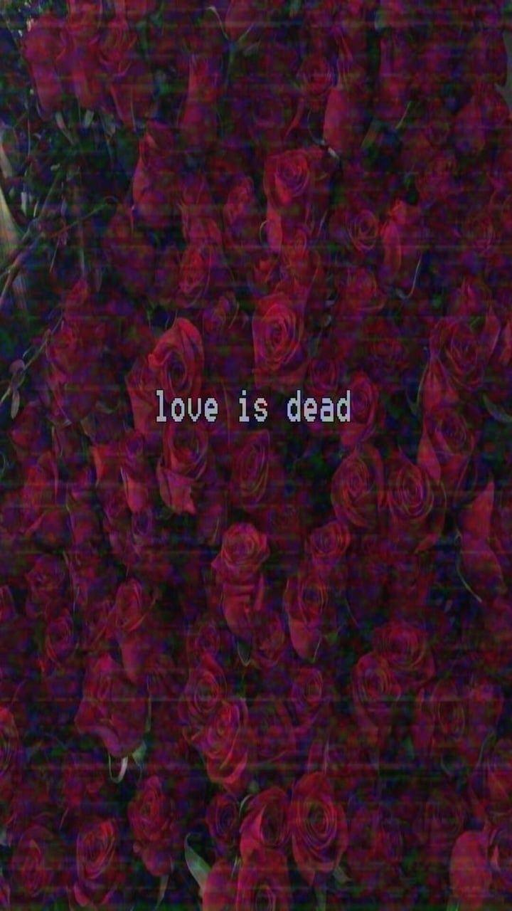 Sometimes i had enough  uploaded by allanpoe on We Heart It