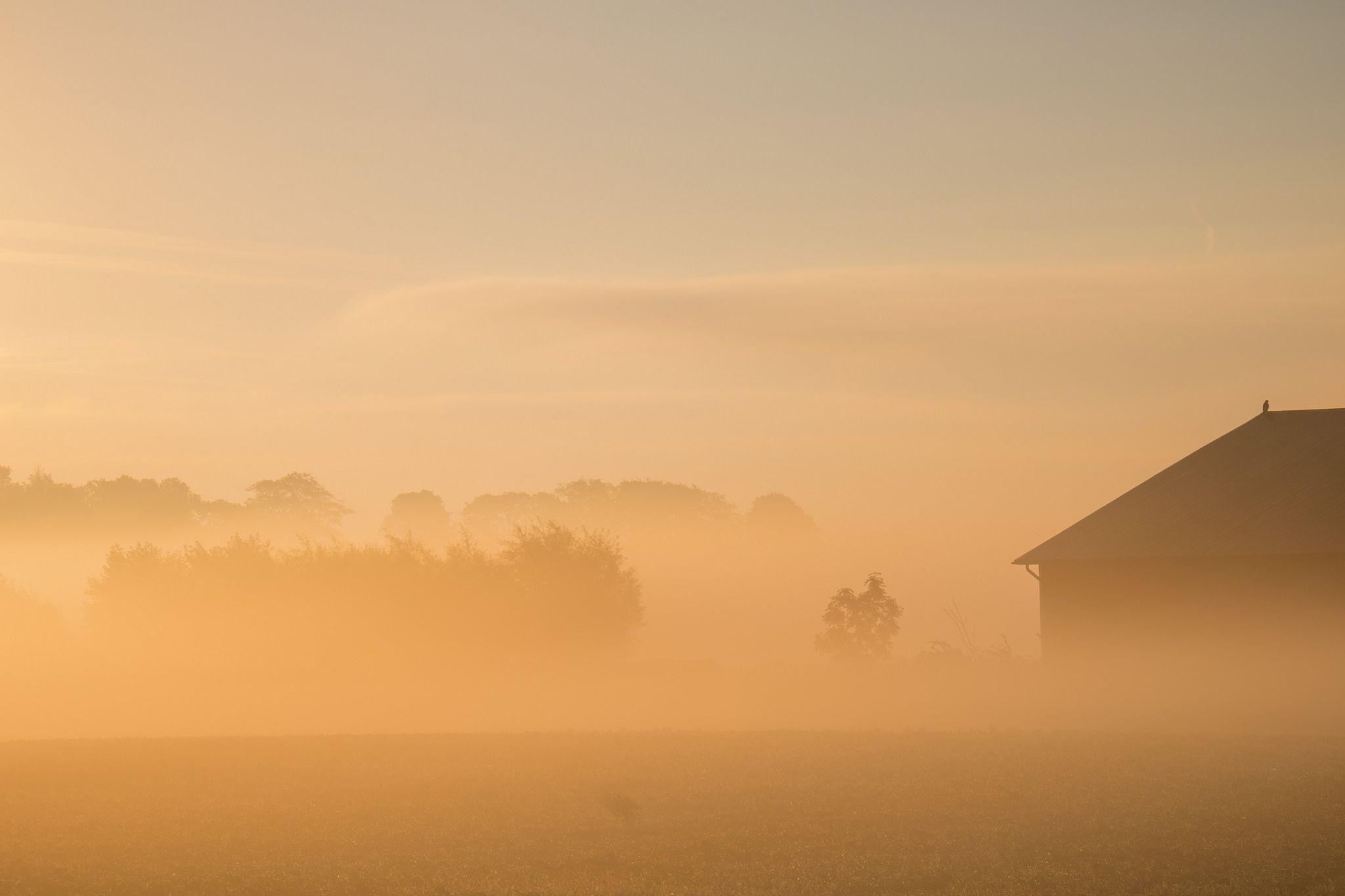 https://flic.kr/p/z5wQk2 | Barn in the mist