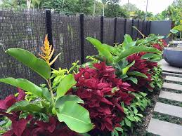 front landscaping ideas florida - Google Search #tropischelandschaftsgestaltung