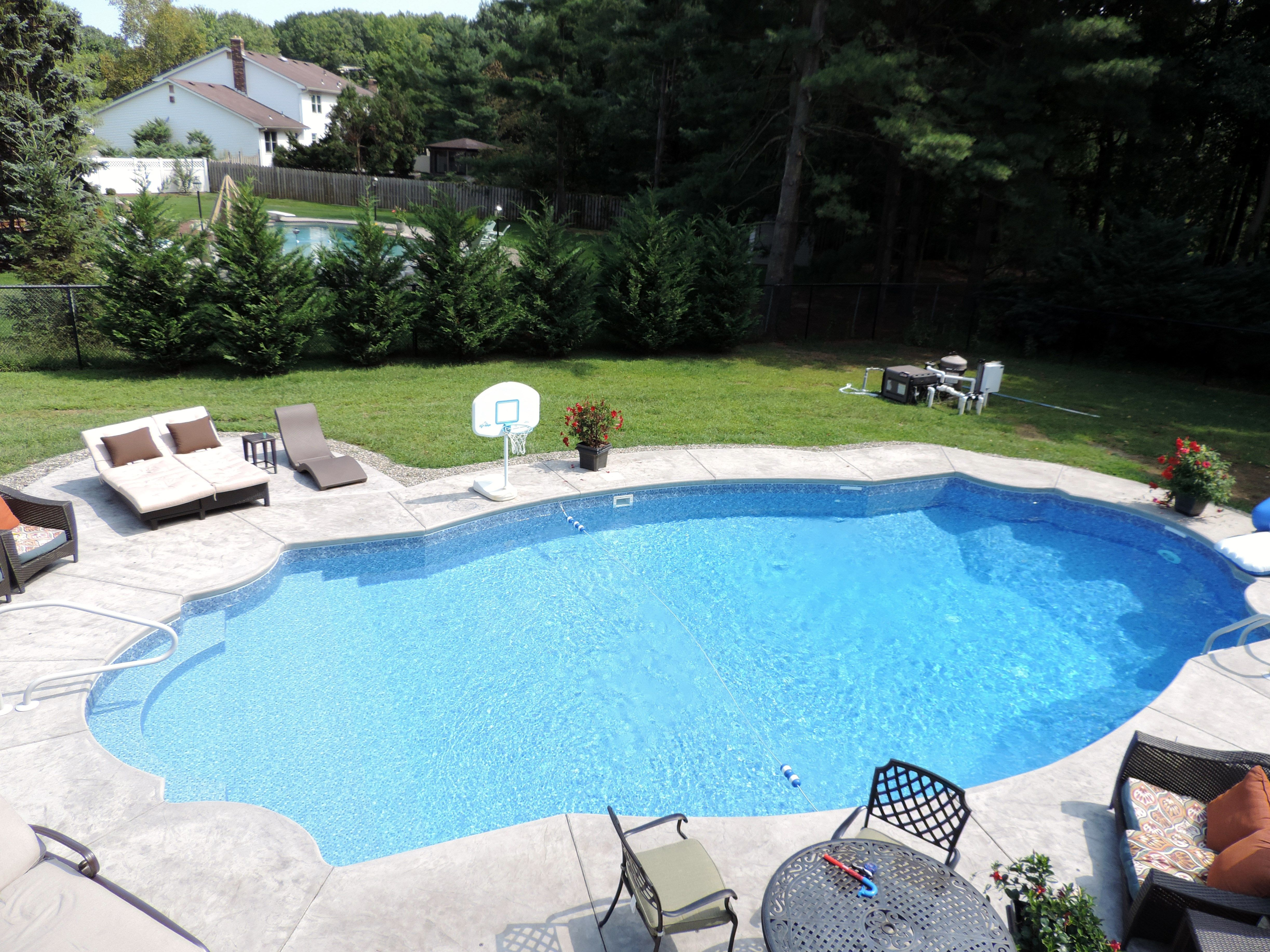 Custom Made Unique Design Inground Pool Back Yard