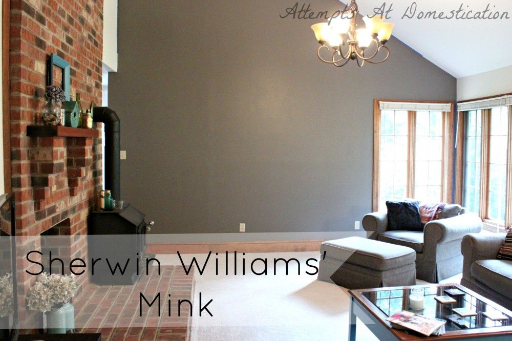 Mink By Sherwin Williams Interior Paint Colors Living Room Paint Interior Paint