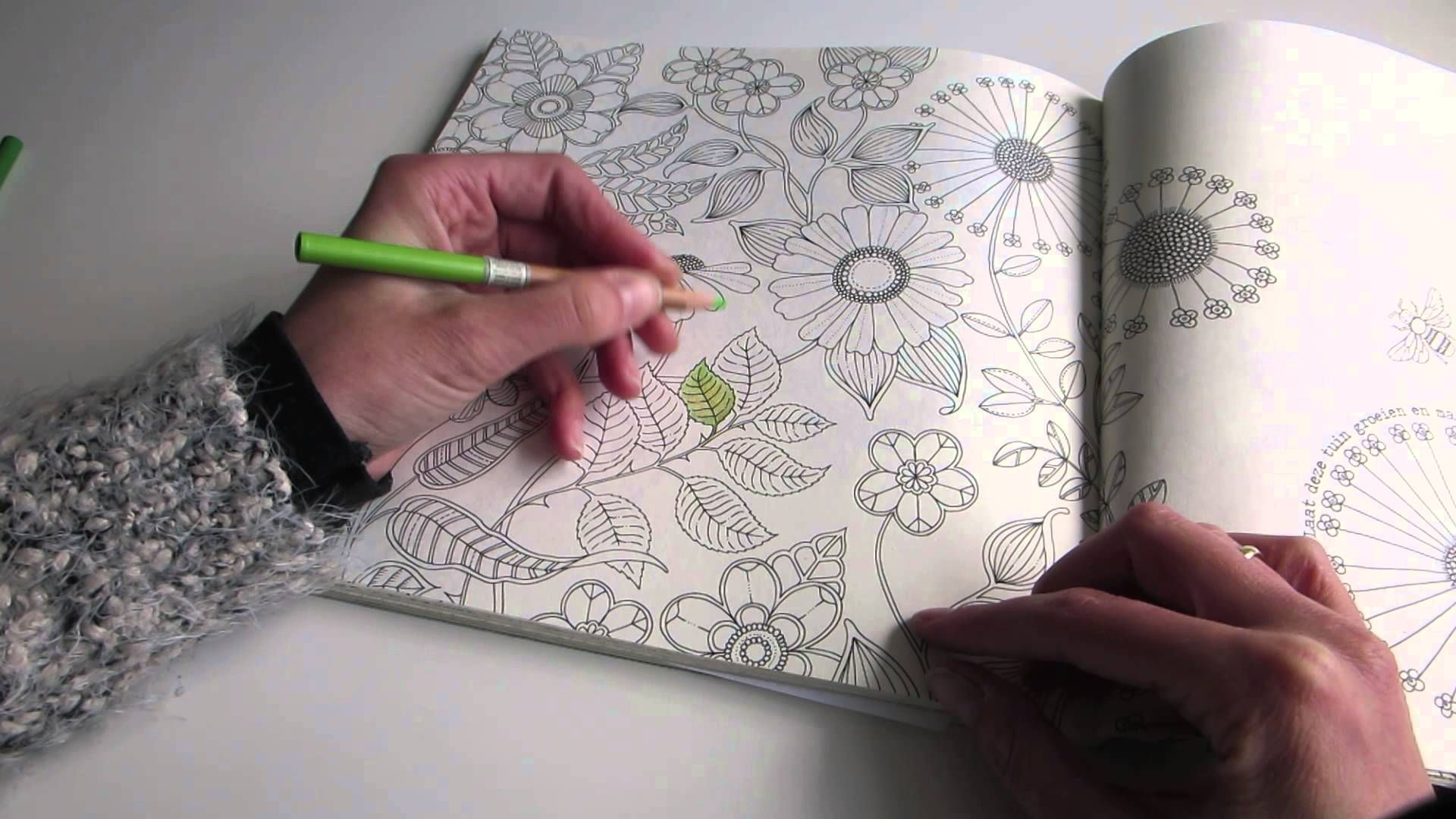 Secret Garden Colouring Book How I Colour A Leaf To