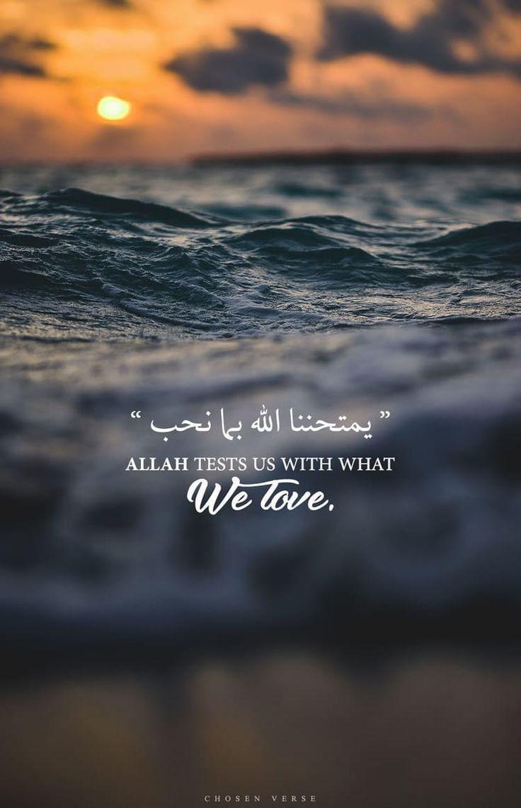 les merveilles de l'islam