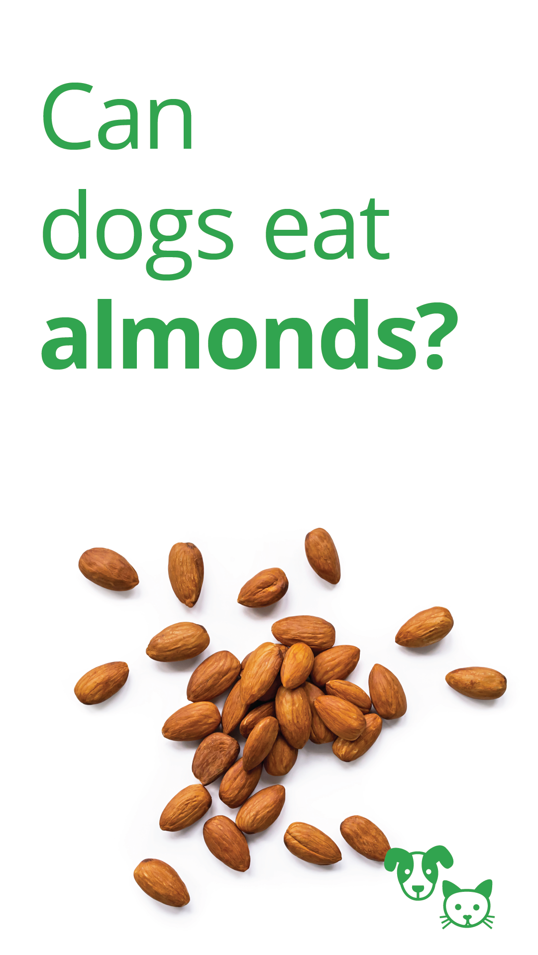 Can Dogs Eat Almonds Healthy Paws Pet Insurance Can Dogs Eat Dog Eating Dangerous Foods For Dogs