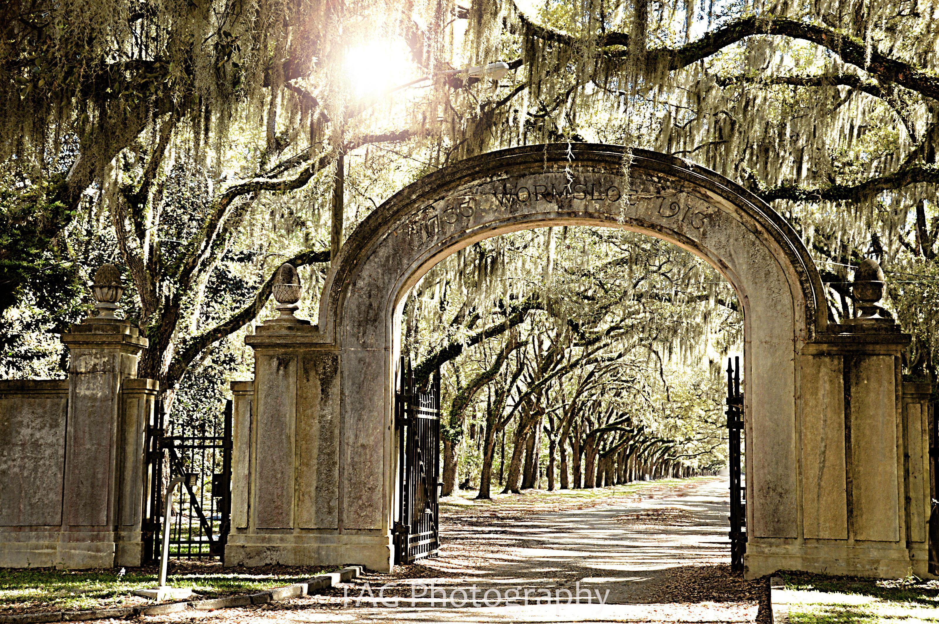 Savannah, GA - Official Website   Official Website