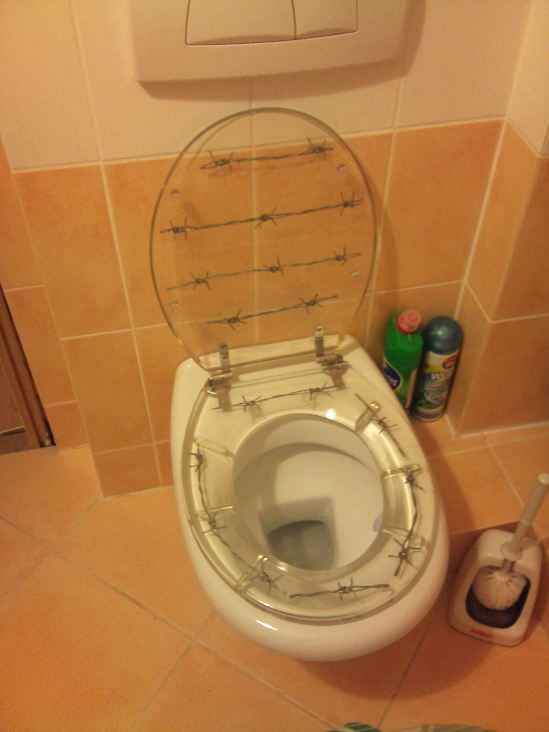 barbed wire toilet seat. Toilet  For the Redneck Barb wire seat Products I Love