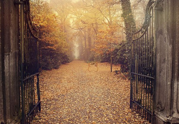 Day 20 - Enter the fall by EliseEnchanted.deviantart.com on @deviantART