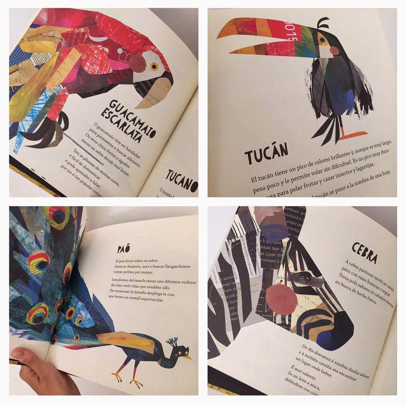 Maya Hanisch: Color Animal / Páginas interiores | Instituto ...
