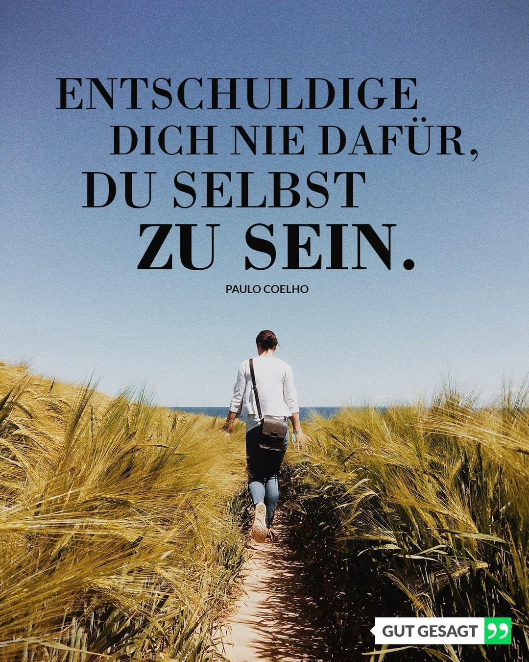 #zitat #zitate #spruch #sprüche #zitatdestages #spruchdestages #zitateundspruech