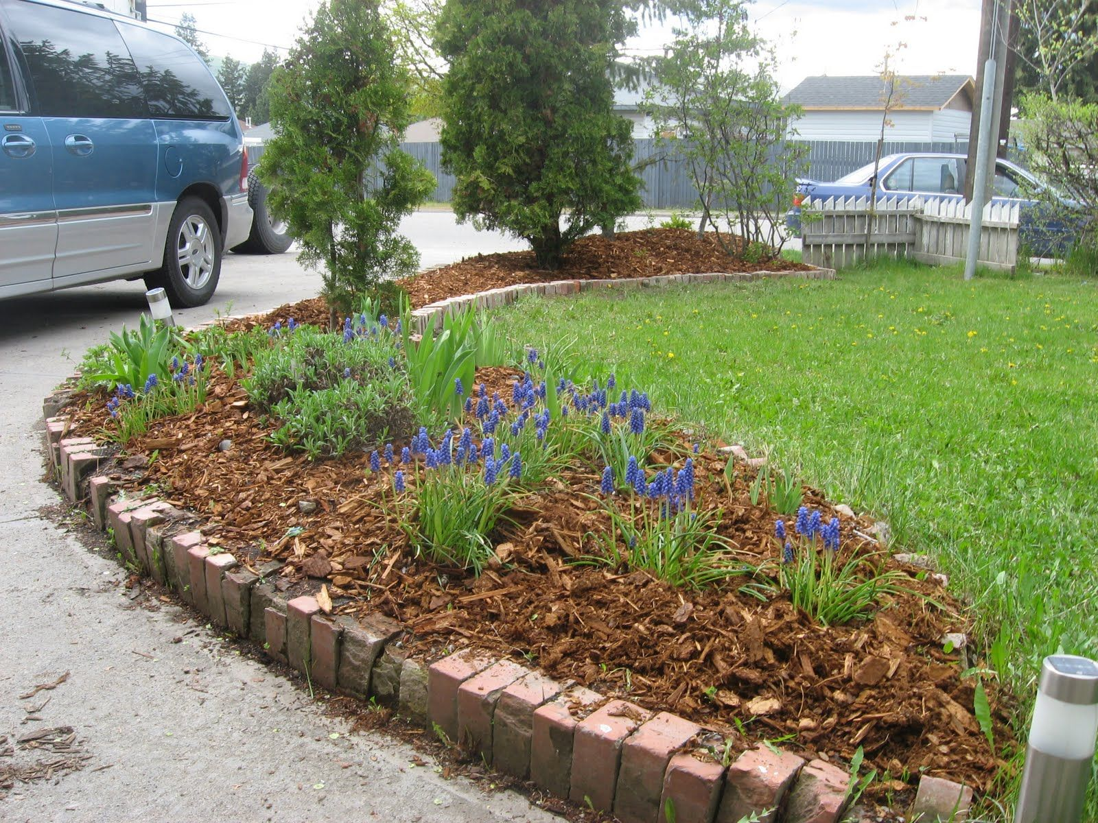 Best Cheap Landscaping In Front Yard · Inexpensive Backyard IdeasPatio  IdeasGarden ...