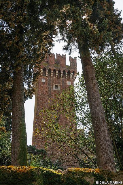 Il castello di Lazise (Lago di Garda)
