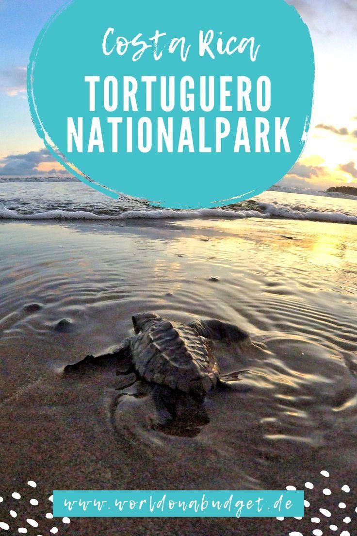 Tortuguero - der Hafen der Schildkröten • Marie von Worldonabudget