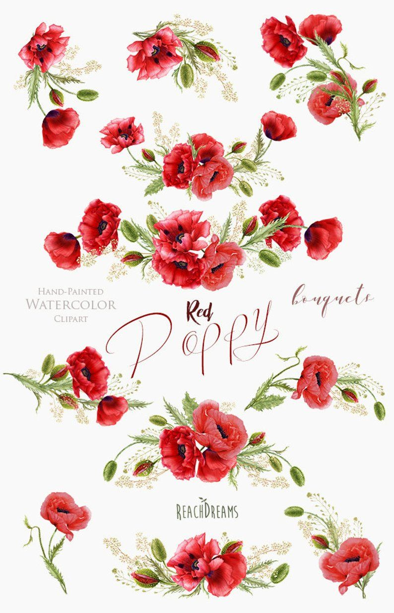 Watercolor Red Poppy Handpainted Bouquets Poppies Flowers