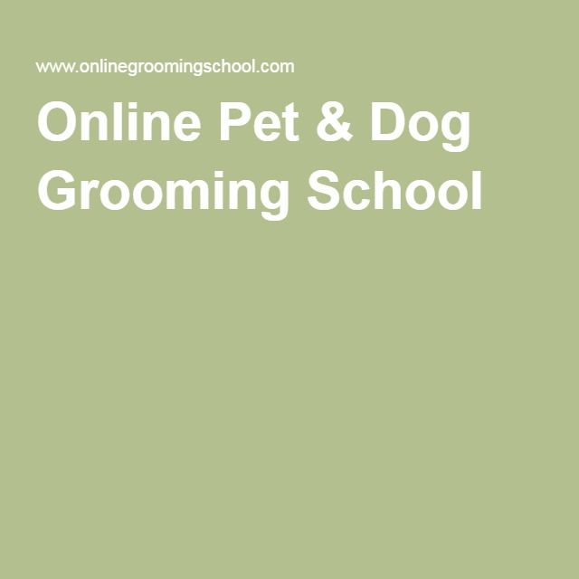 Pet Grooming Business Pet Release Forms Printable Pdf File Dog Grooming Shop Dog Grooming Salons Pet Grooming Salon